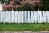 fence with fluffy bush