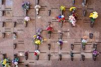 flowers on a Cremation Memorial Wall