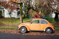 orange volks wagon bug in front of green house