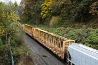 rail cars and trees with fall colors