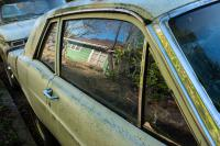 green house reflected in car window