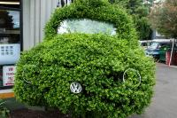 bush trimmed and decorated to look like a VW bug