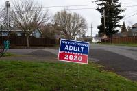 2020 campaign sign Any Functioning Adult