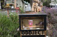 Oddject display case, and squirrel sculpture